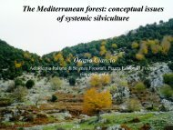 Systemic silviculture - DNA Cascais