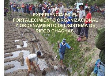 experiencia en el fortalecimiento organizacional y ordenamiento del ...