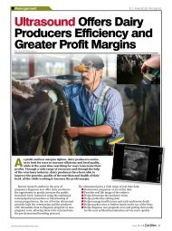 Ultrasound Offers Dairy Producers Efficiency and Greater Profit ...