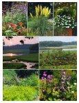 Garnet Copeland Garden of the Month - Garden Club of Virginia - Page 2