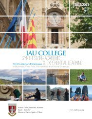 234885-IAU Catalog.indd - Institute for American Universities