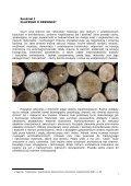 Praca dyplomowa - Page 2