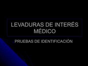LEVADURAS DE INTERÉS MÉDICO