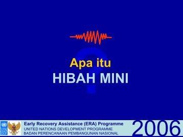 HIBAH MINI - UNDP