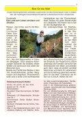 Kirchenfenster - Evangelische Kirchengemeinde Zavelstein - Page 7