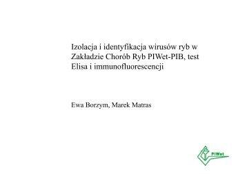 Izolacja i identyfikacja wirusów ryb w ZCHR [pdf]