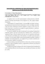 EVALUACIÓN DE LA RESISTENCIA DE TRECE PORTAINJERTOS ...