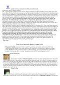 Descarca revista - focsani.jewish.ro - Page 5
