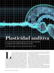 Plasticidad auditiva. Excelente artículo de la revista Investigación