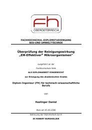 """Überprüfung der Reinigungswirkung """"EM·Effektiver - Multikraft"""