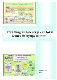 Förädling av bioenergi - en lokal resurs att nyttja fullt ut Inledning