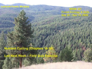 Nutrient Cycling (Chapters 16-18) Lab Next Week – Field Quiz ...