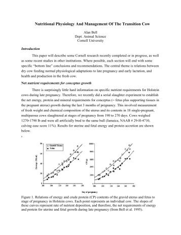 Nutritional Physiology And Management Of The Transition Cow