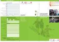 Flyer mit Bewerbungsformular (pdf, 212 KB) - Fussball Kultur