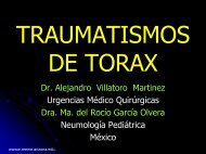 Traumatismos De La Pared Torácica - Reeme.arizona.edu