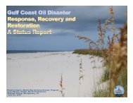 Gulf Coast Oil Spill Response Power Point - Mobile Bay National ...