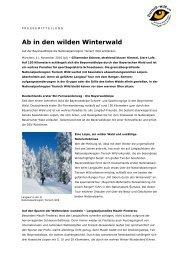 Ab in den wilden Winterwald