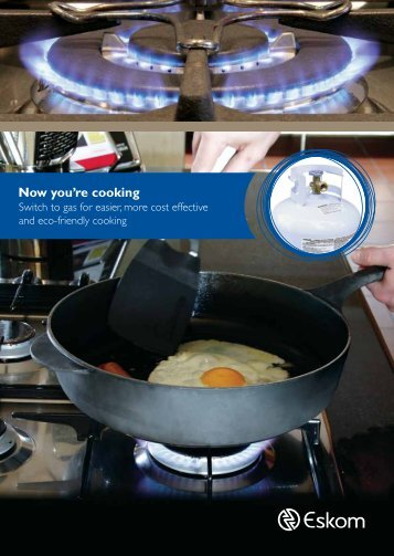Gas cooking brochure - Eskom IDM