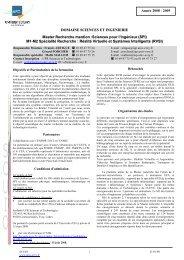 Année 2008 - 2009 DOMAINE SCIENCES ET INGENIERIE Master ...