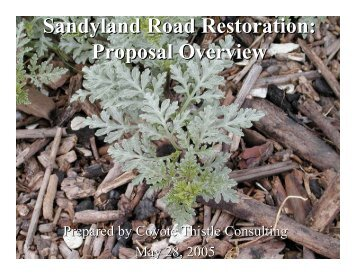 Sandyland Road Restoration: Proposal Overview