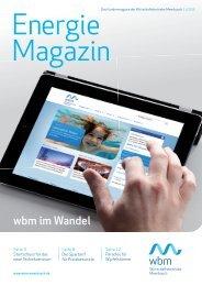 01/2013 zum Download (PDF) - wbm