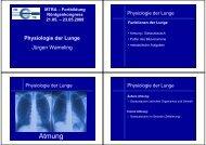 Physiologie der Lunge