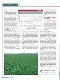 Medidas de apoyo al cultivo - Page 2