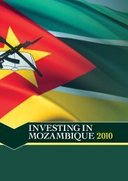 investing in mozambique 2010 - Developing Markets Associates ...