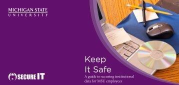 Keep It Safe - Enterprise Information Stewardship - Michigan State ...