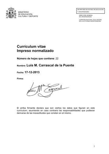 Curriculum Vitae Mr Luis Enrique Bernal Pdf Colegio Bilnge Pio Xii