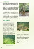 Asset Management - Page 3