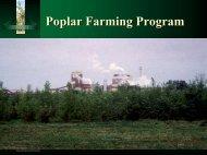 Poplar Farming Program - Pollution Probe
