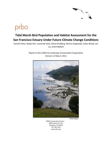 Tidal Marsh Bird Population and Habitat Assessment for the San ...
