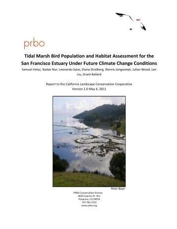 Tidal Marsh Bird Population and Habitat Assessment for the San ...