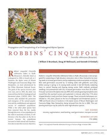 robbins' cinquefoil - Native Plant Network