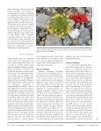 robbins' cinquefoil - Native Plant Network - Page 5