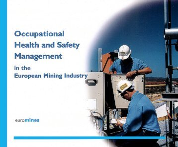 5. Role of occupational health and safety management - Euromines