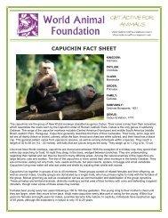 CAPUCHIN FACT SHEET - World Animal Foundation