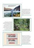 Zusammenfassung der Beiträge als Tagungsband (PDF) - Seite 6