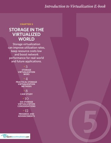 STORAGE IN THE VIRTUALIZED WORLD - Bitpipe