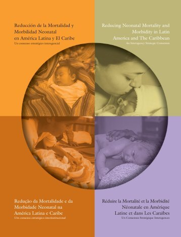 Reducing Neonatal Mortality and Morbidity in Latin America ... - basics