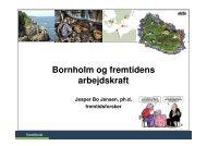 Bornholm og fremtidens arbejdskraft - Fremtidsforskeren Jesper Bo ...