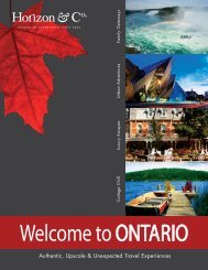 Ontario Brochure - Horizon & Co.