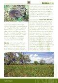A nemzeti park - Fertő-Hanság Nemzeti Park - Page 7