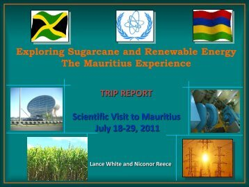 Exploring Sugarcane and Renewable Energy - The Jamaican Sugar ...