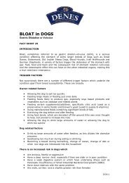 "Download PDF version of ""Bloat in Dogs"" - Denes Natural Pet Care"
