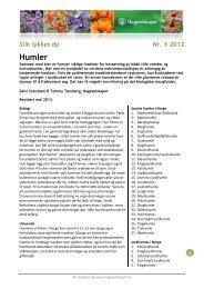 Humler - Hageselskapet