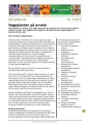 Hageplanter på avveie - Hageselskapet