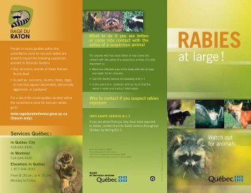 Rabies at large Watch out for animals... - Gouvernement du Québec
