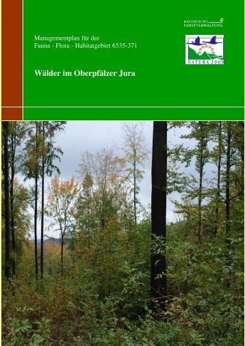 Wälder im Oberpfälzer Jura - Amt für Ernährung, Landwirtschaft und ...
